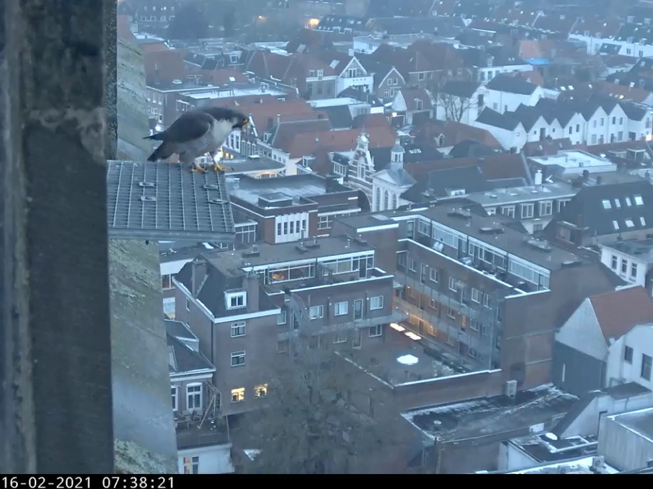 Amersfoort/OLV toren - Pagina 3 A_foor10