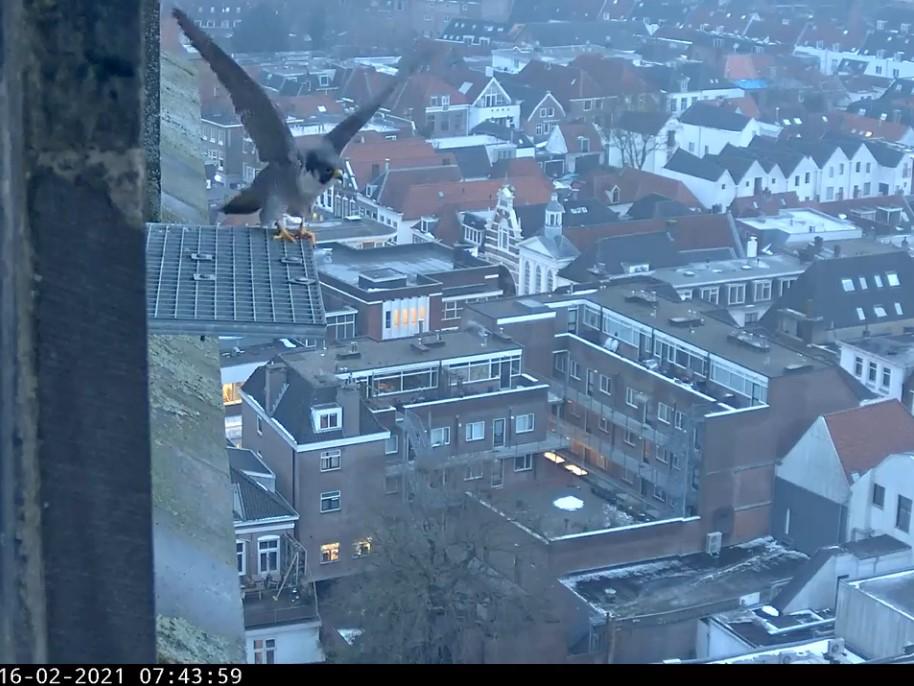 Amersfoort/OLV toren - Pagina 3 A_foor11