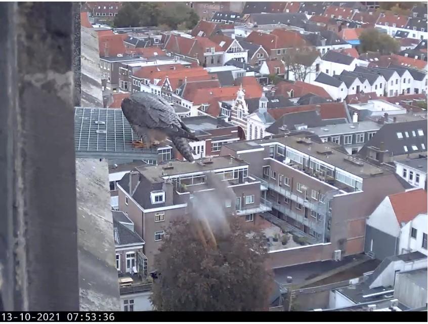 Amersfoort/OLV toren - Pagina 10 A_foor29