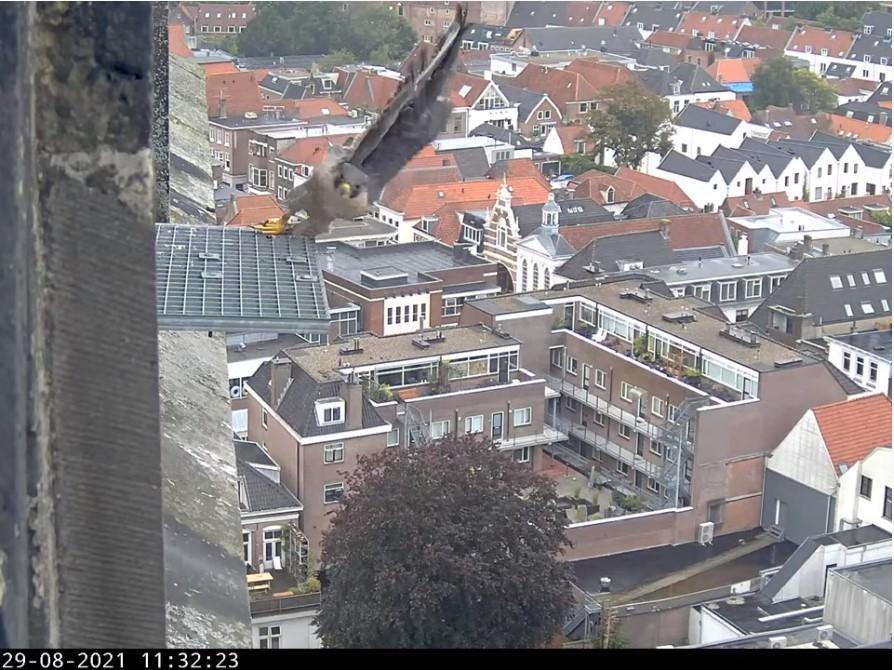 Amersfoort/OLV toren - Pagina 9 Afoort12