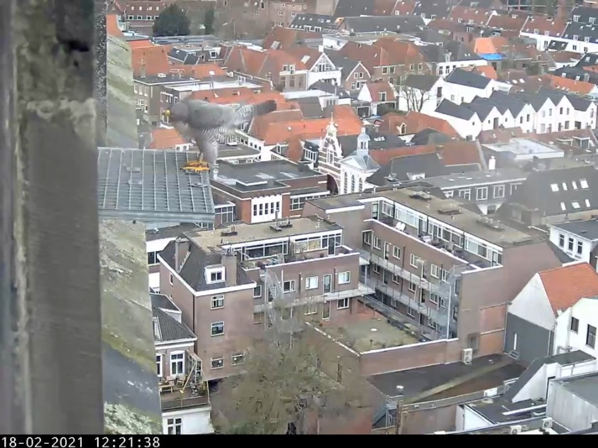 Amersfoort/OLV toren - Pagina 3 Amers100