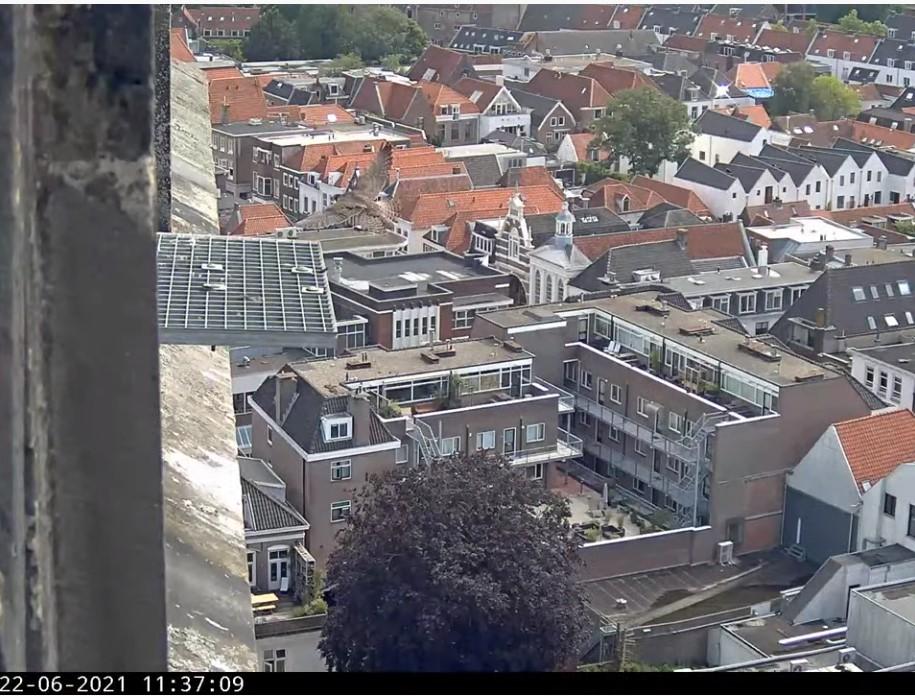 Amersfoort/OLV toren - Pagina 8 Amers145