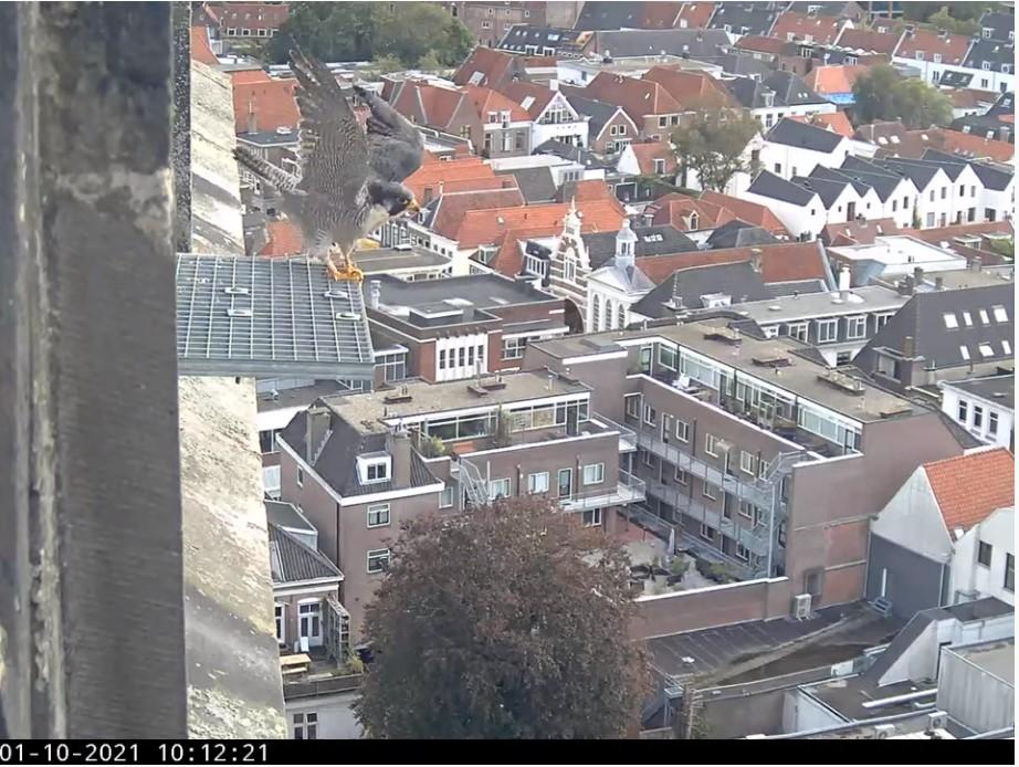 Amersfoort/OLV toren - Pagina 10 Amers161