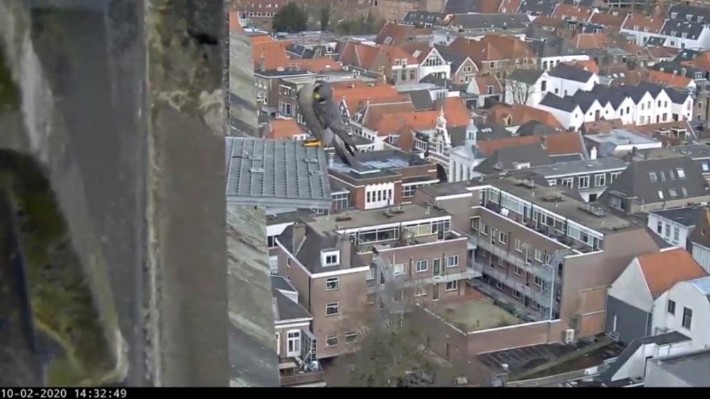 Amersfoort/OLV toren. Joris en V (1PF) - Pagina 4 Amersf19