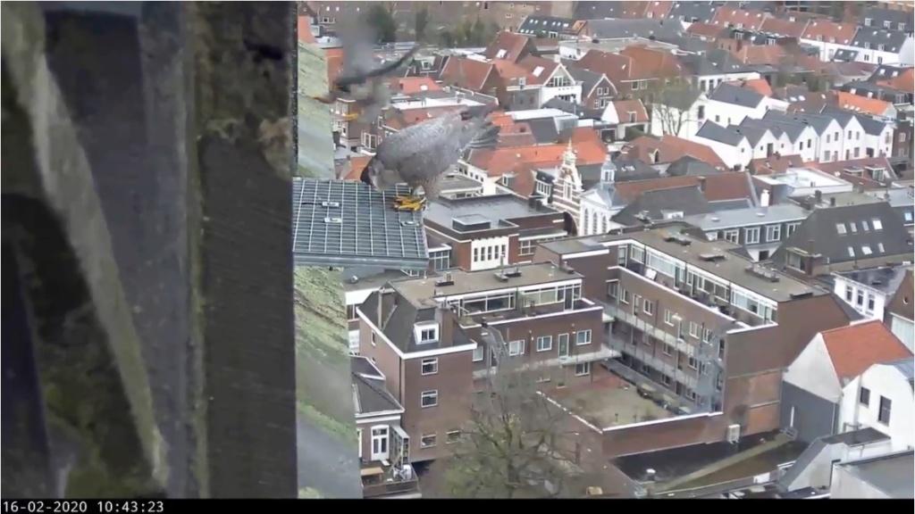 Amersfoort/OLV toren. Joris en V (1PF) - Pagina 4 Amersf21