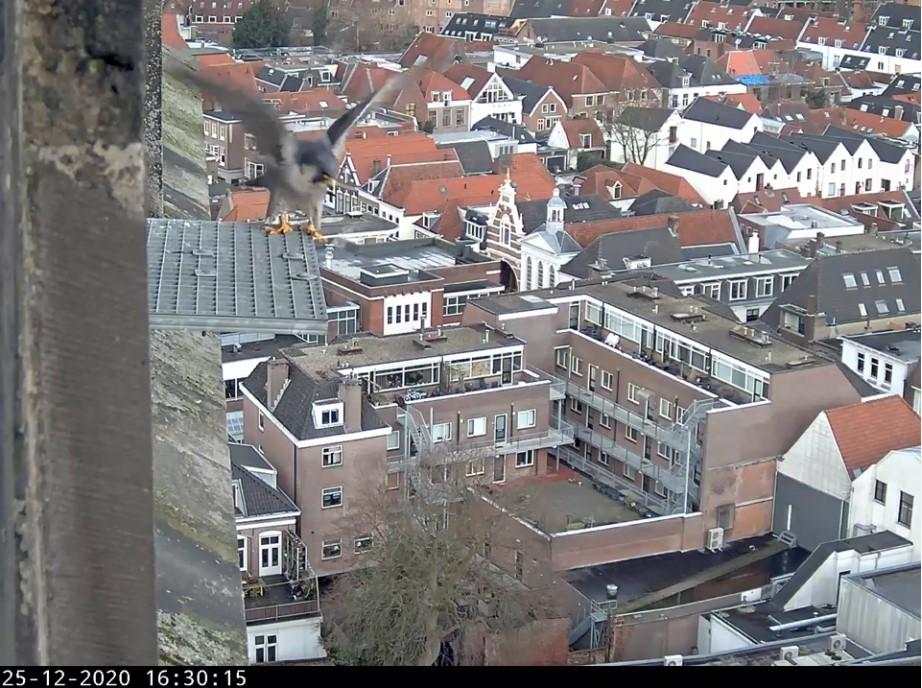 Amersfoort/OLV toren Amersf74