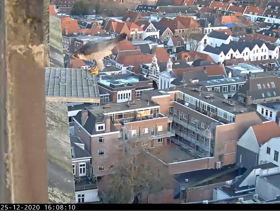 Amersfoort/OLV toren Amersf75