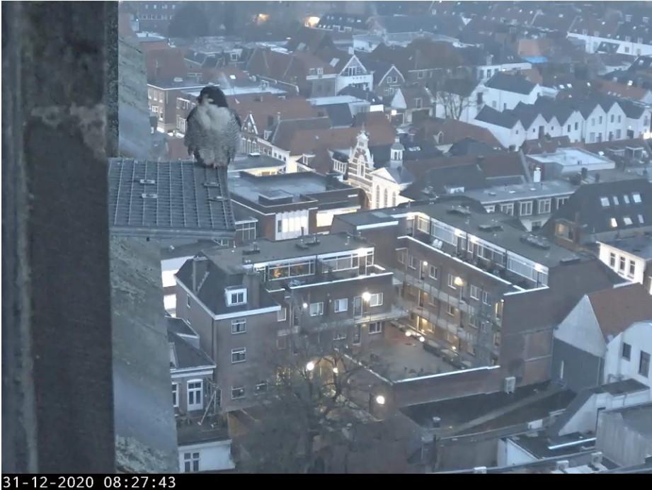 Amersfoort/OLV toren Amersf77