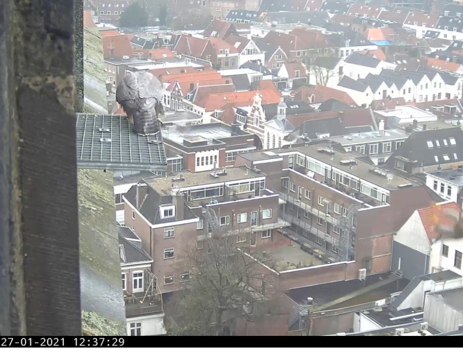 Amersfoort/OLV toren - Pagina 2 Amersf81