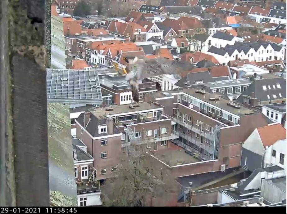 Amersfoort/OLV toren - Pagina 2 Amersf82