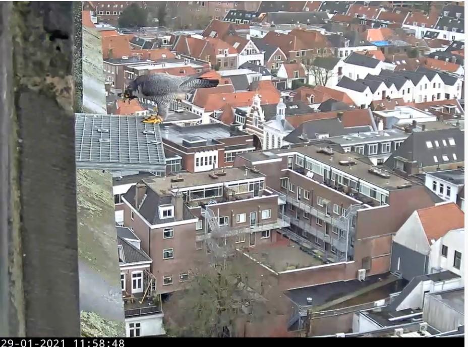 Amersfoort/OLV toren - Pagina 2 Amersf83