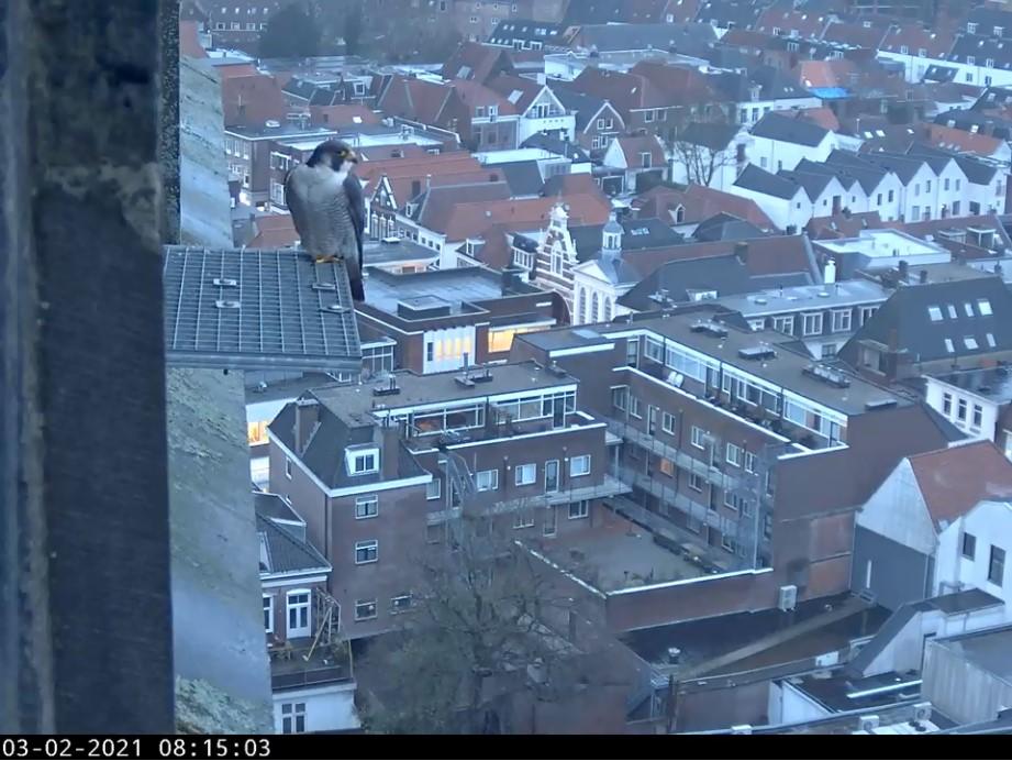 Amersfoort/OLV toren - Pagina 2 Amersf87