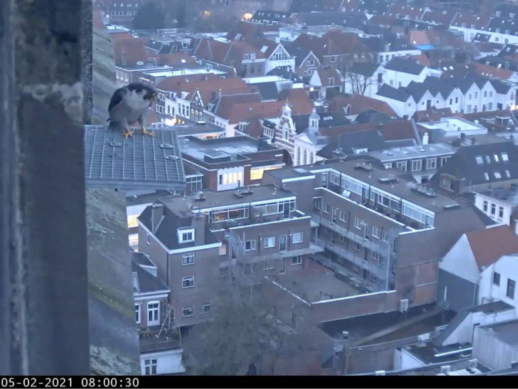 Amersfoort/OLV toren - Pagina 2 Amersf90