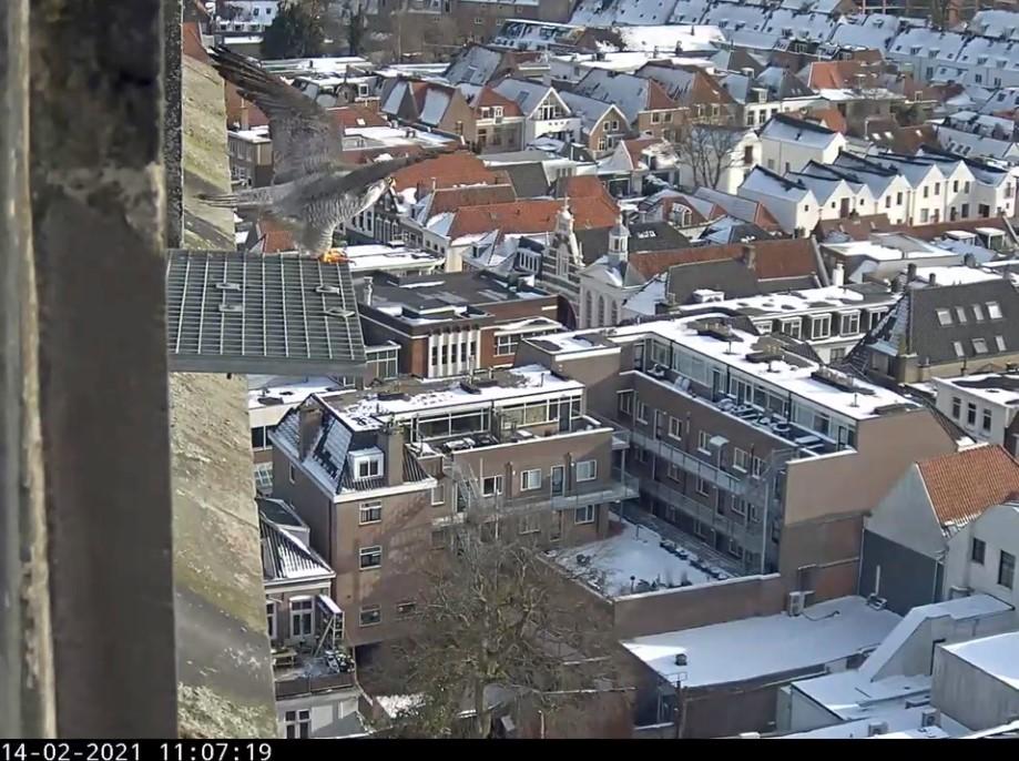 Amersfoort/OLV toren - Pagina 3 Amersf94