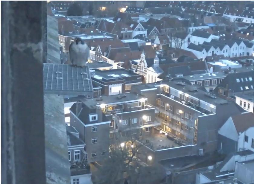 Amersfoort/OLV toren - Pagina 3 Amersf95