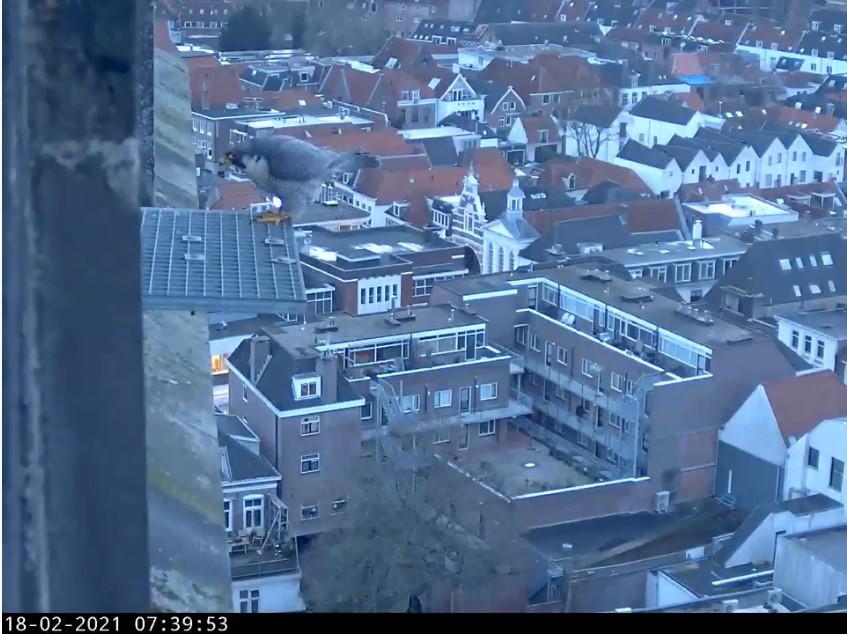 Amersfoort/OLV toren - Pagina 3 Amersf96
