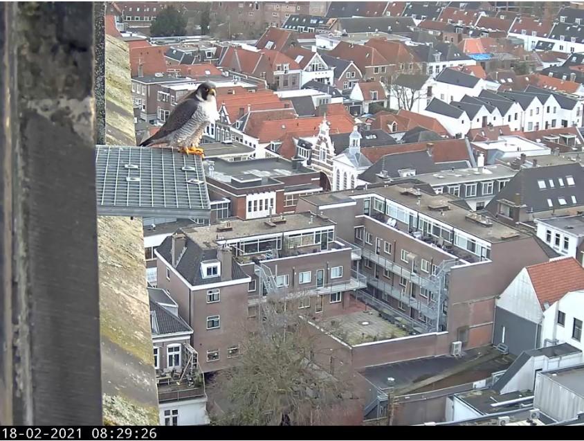 Amersfoort/OLV toren - Pagina 3 Amersf97