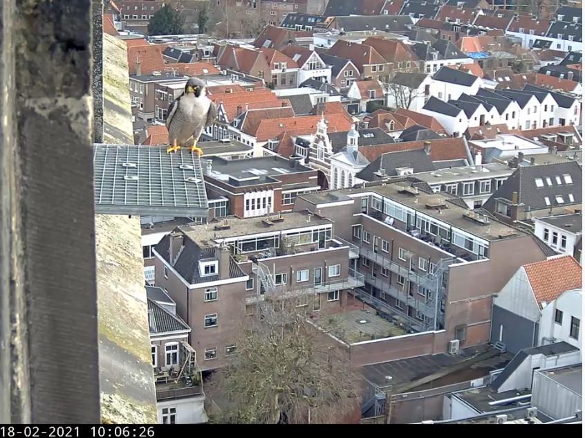 Amersfoort/OLV toren - Pagina 3 Amersf98
