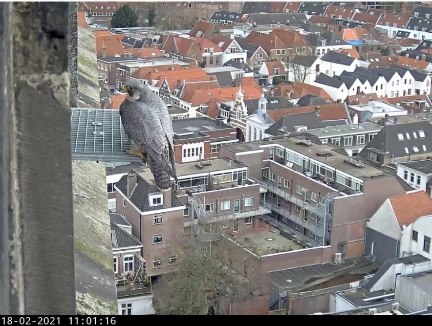 Amersfoort/OLV toren - Pagina 3 Amersf99