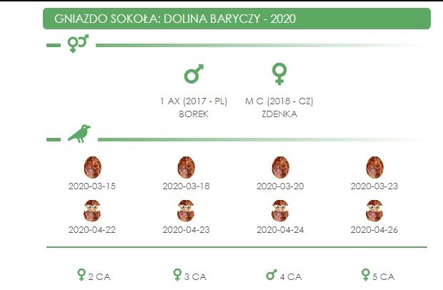 DOLINA BARYCZY. Male 1 AX (2017 - PL) Female M C (2018 - CZ) - Pagina 3 Dolina10