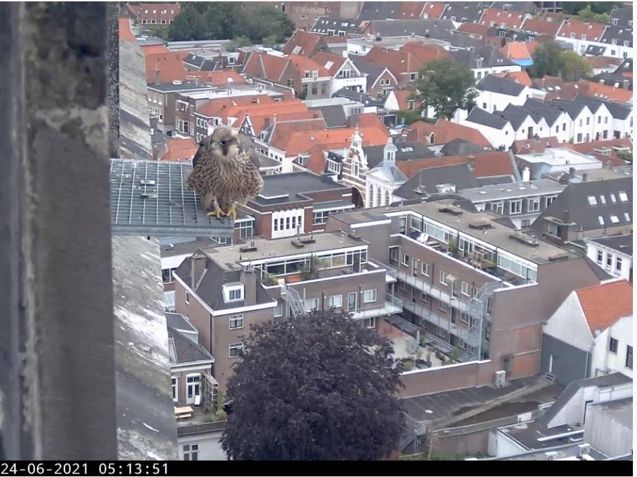 Amersfoort/OLV toren - Pagina 8 Foort_10