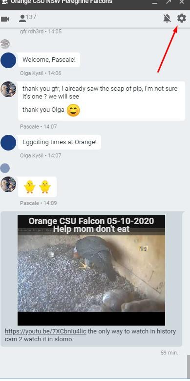 Orange CSU. 2020- 2021 Diamond ♀ en Xavier ♂ - Pagina 7 Hangou10