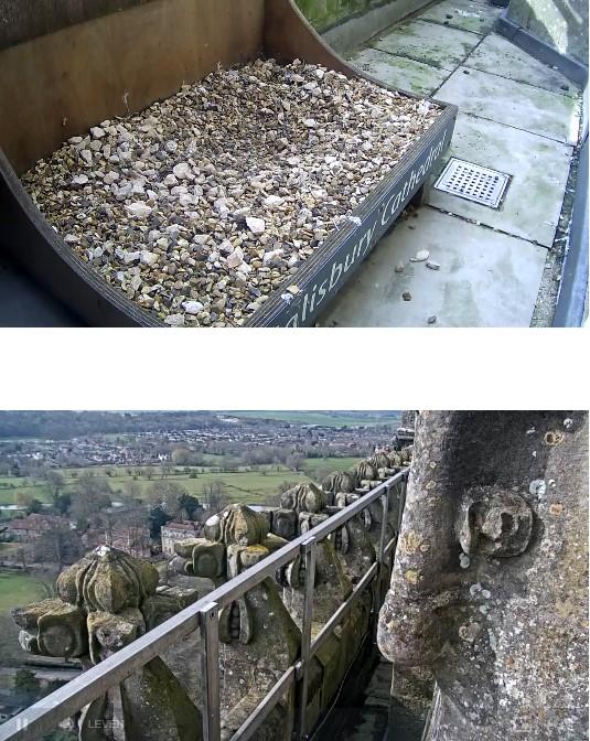 Salisbury Cathedral. Salisb10