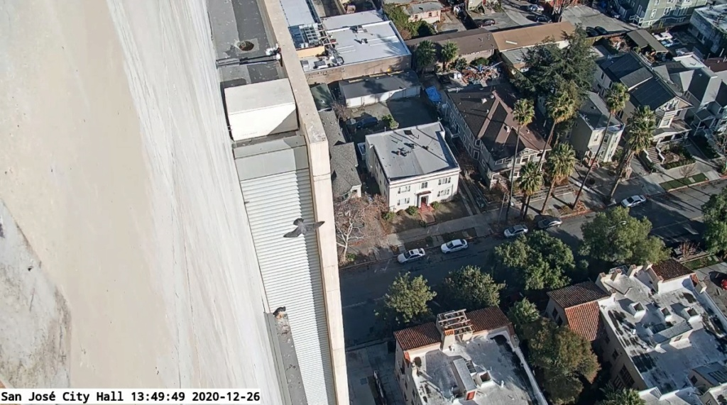 Californië: San Jose en San Francisco, Anacapa, UC Berkeley. Sacramento. San_jo10