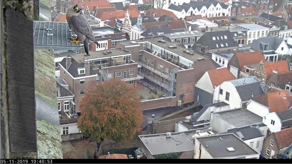 Amersfoort/OLV toren. Joris en V (1PF) Valk_a22