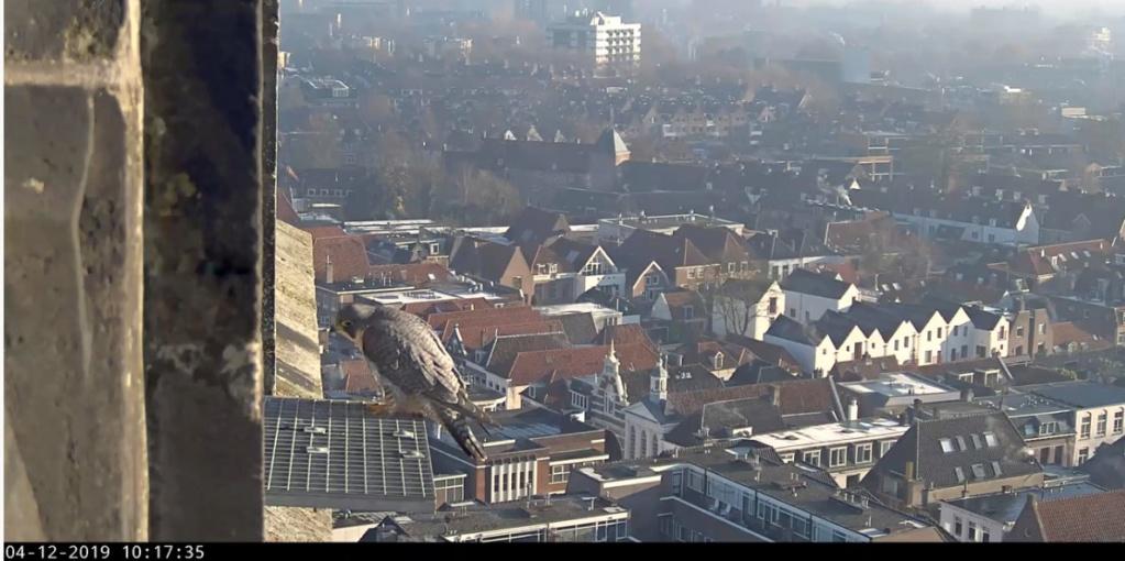 Amersfoort/OLV toren. Joris en V (1PF) Valk_a36