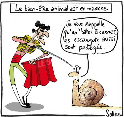 HUMOUR en dessins et en citations Dessin37