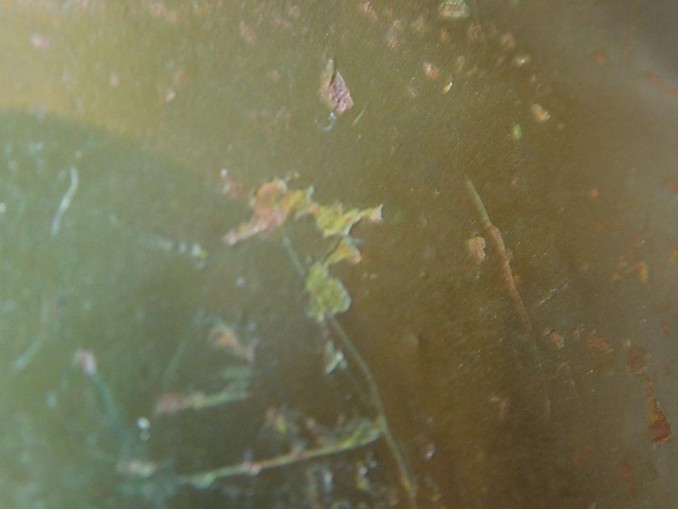 Identification Coque Casque Allemand Dscn5414