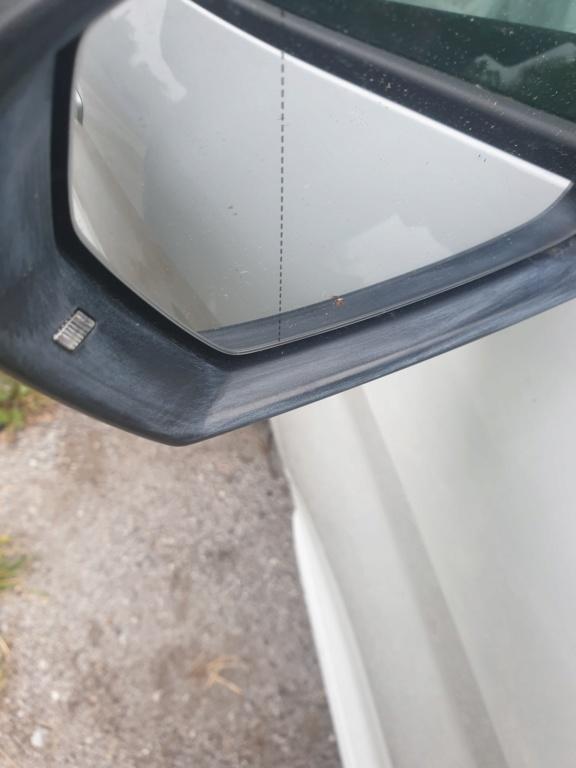 Strana patina bianca sulla plastica nera dello specchietto laterale sinistro 20200412