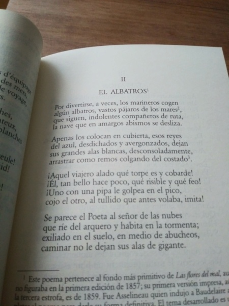 LIBROS, LIBROS, LIBROS - Página 2 20210112