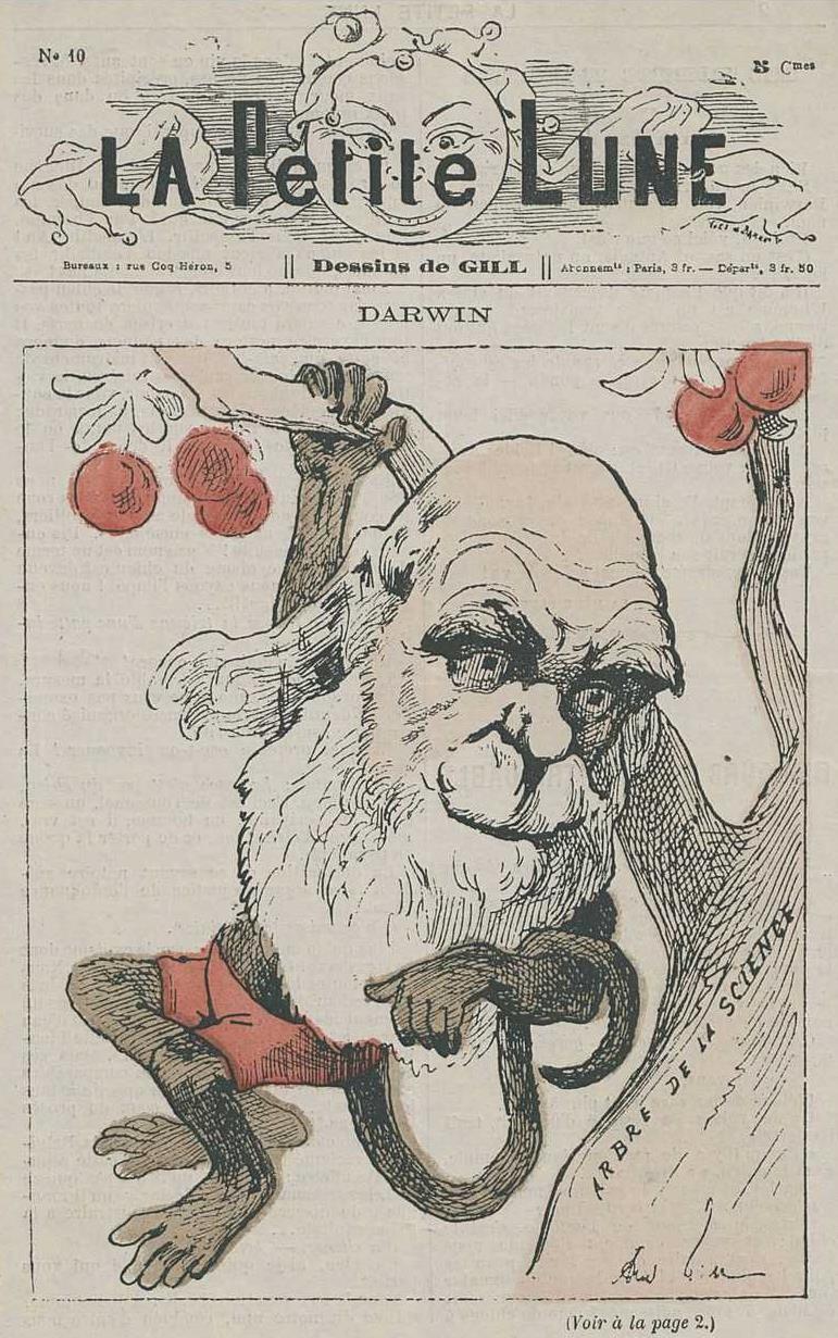 DARWIN Darwin10
