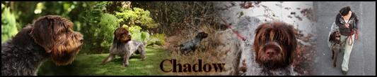pas espagnol Chadow10