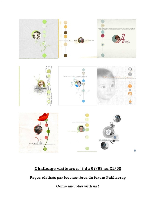 challenge visiteurs n° 3 : du 7 au 21/08/09 Compos13