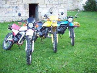 DTMX 125 cc MEMBRES : Personnalisées 102_1810