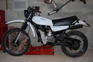 DTMX 125 cc MEMBRES : Personnalisées Dsc00912