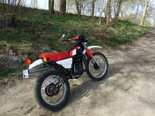 DTMX 125 cc Membres / Mod. 1979 Dscf2710