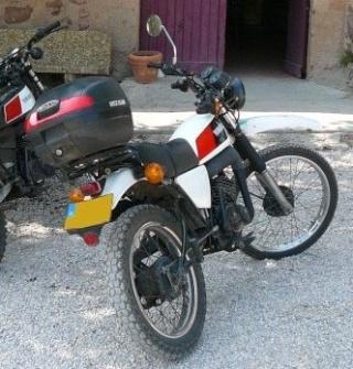 DTMX 125cc Membres / Mod. 1978 Dtmx10