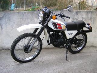 DTMX 125cc Membres / Mod. 1977 Herbi510