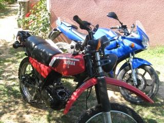 DTMX 125 cc Membres / Mod. 1979 Img13710