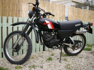 DTMX 125cc Membres / Mod. 1981 Imgp1810