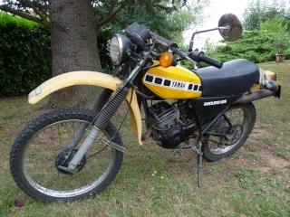 DTMX 125 cc MEMBRES : Personnalisées P1000210