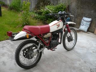 DTMX 125 cc MEMBRES : Personnalisées P1020710