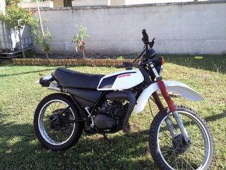 DTMX 125 cc MEMBRES : Personnalisées Photo010