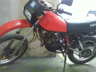 DTMX 125cc Membres / Modèles endurisés Photo710