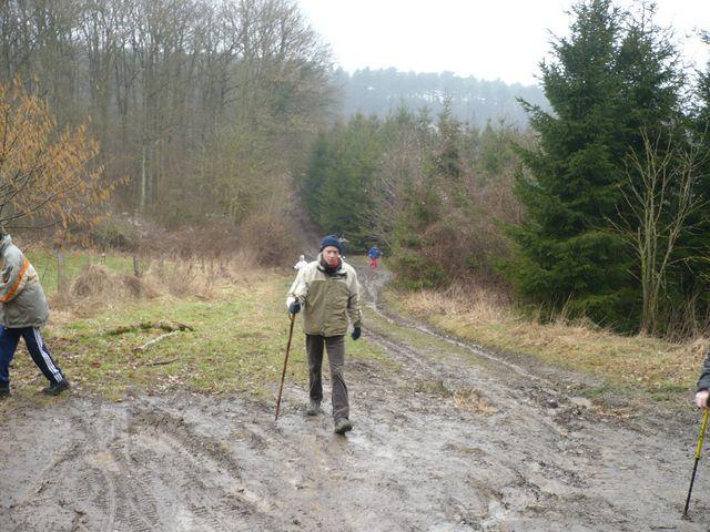 Sortie en Marche Nordique au Mont-des-pins 08/03/09 P1050513