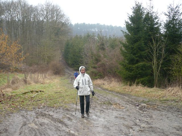 Sortie en Marche Nordique au Mont-des-pins 08/03/09 P1050516